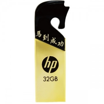 HP USB v219g FlashMemory